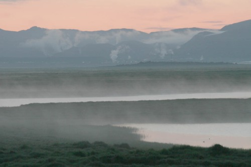 Nótt í friðlandinu í Flóa á suðurlandi