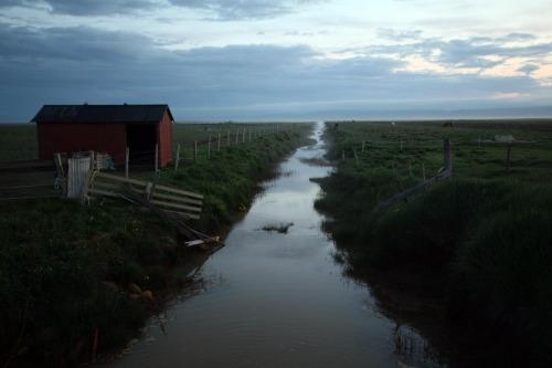 Friðland í Flóa