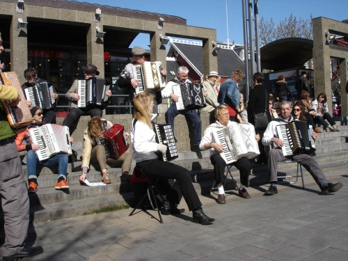 Accordion concert